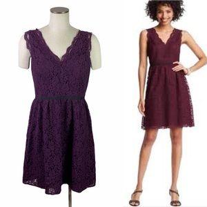 Loft Lace Burgundy Plum Cocktail Dress Size 8